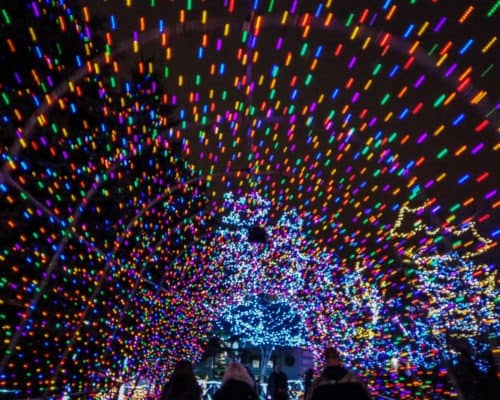 Bentleyville Tour of Lights Tunnel