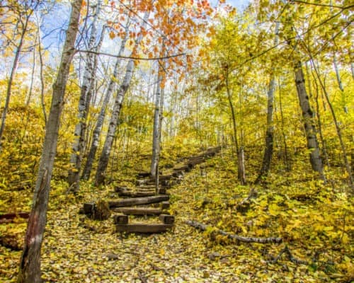 The Stairs Leading to the Superior Hiking Trail