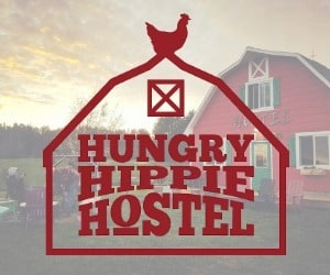 Hungry Hippie Hostel Medium Rectangle Ad