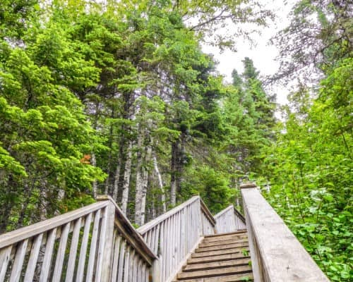 The hike to the Devils Kettle Waterfall in Judge CR Magney State Park requires many stairs