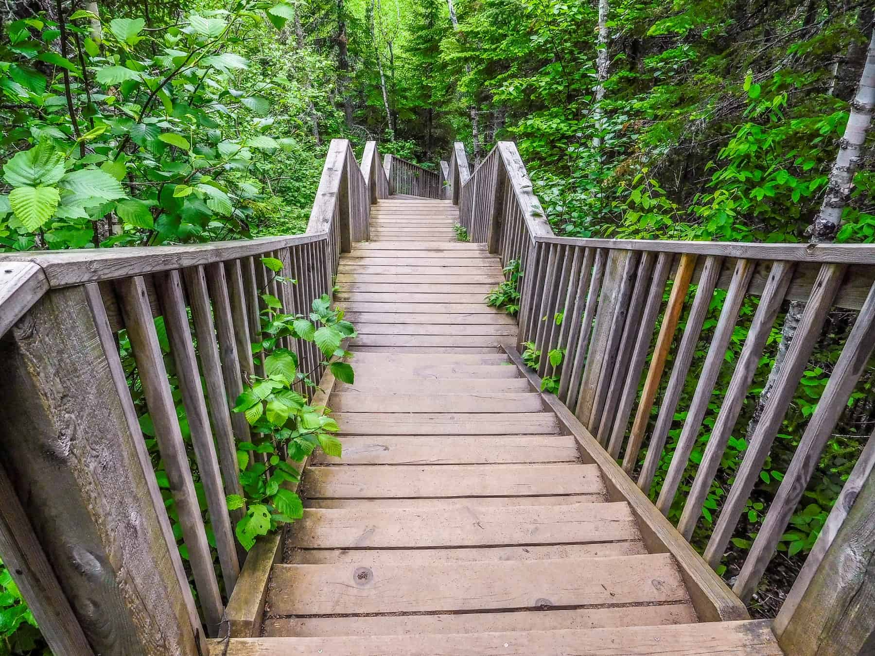 The hike to the Devils Kettle Waterfall includes many stairs