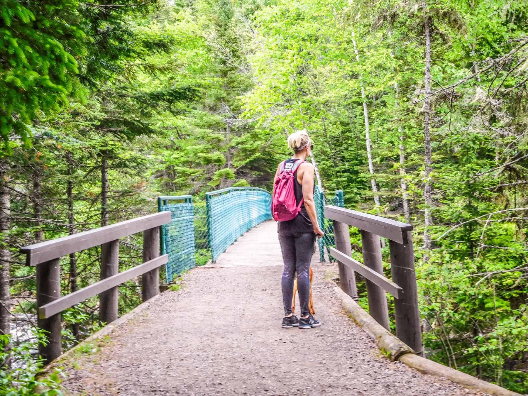 Take a hike at Judge CR Magney State Park near Hovland Minnesota