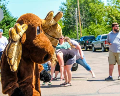 Visit Cook County's Murray the Moose