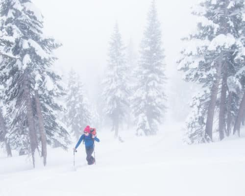 Powder days make for great snowshoeing adventures