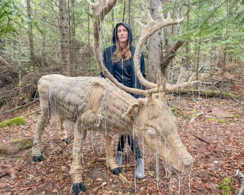 """Corrie Steckelberg with her woodland caribou """"Once and Future"""" art installation"""