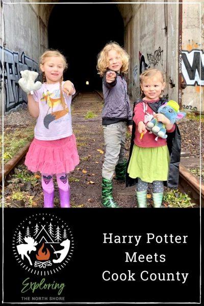 Harry Potter Pinterest Post